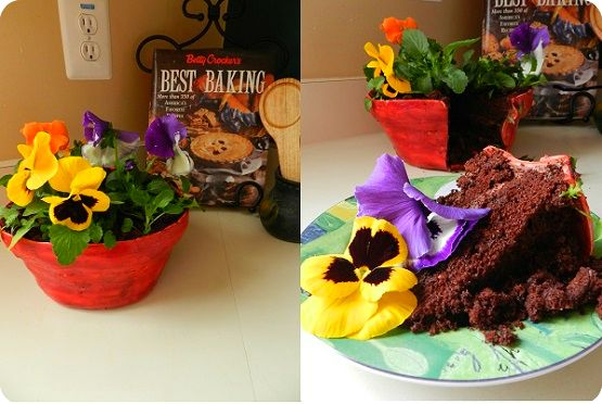 flower pot cake- tutorial