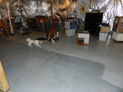 Removing Water from Flooded Basement