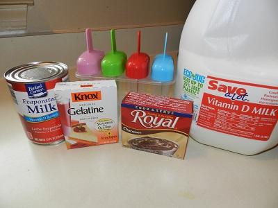 Homemade Creamy Pudding Pops